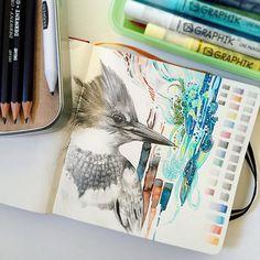 Derwent derwent pencils, sketch journal, watercolor tips, coloured pencils, Sketchbook Layout, Gcse Art Sketchbook, Sketch Journal, Watercolor Sketchbook, Sketchbook Inspiration, Sketchbooks, Sketching, Art Sketches, Art Drawings
