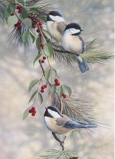 Winter Chickadees - source unidentified