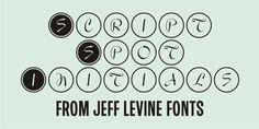 Script Spot Initials JNL Font Download #font#fonts#typography#lettering