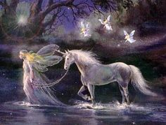 Fairy & Unicorn