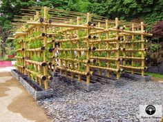agriculture urbaine Potager urbain en bamboo