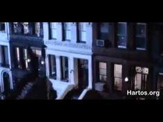 Estoy más que Harto (Hartos.org)