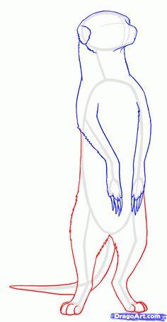 Meerkat step by step. Animal Sketches, Animal Drawings, Art Drawings, Animal Illustrations, Art Sketches, Online Drawing, Animal Activities, Art Mural, Safari Animals