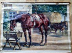 Skoleplansje av hest