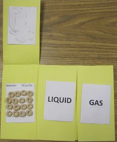 Classroom Magic: Science Matters FREEBIE