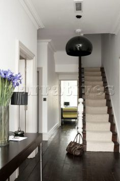 Hallway  with dark wood floorboards and carpeted stairs