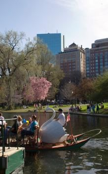 Boston Common and Public Garden, Walkways, Flowers, and Swanboats