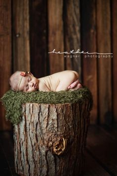 Wonder if Teresa could do this shot when Colby is born? Would go great with his cabin room!