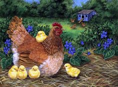 Курочка. Mother hen and chicks
