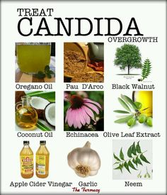 Treat Candida overgrowth ~ The Farmacy