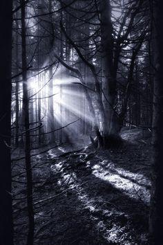 Le côté obscur de mère nature