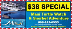 Pride_MD_couponRevised 38 Special, Maui, Hawaii, Snorkeling, Compliments, Turtle, Pride, Tours, Vacation
