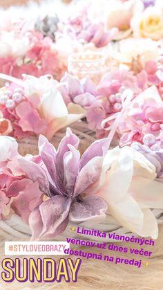 Rose, Flowers, Plants, Christmas, Painting, Yule, Pink, Xmas, Roses