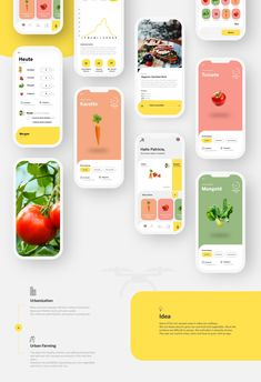 """""""Flying Veggies"""" is a conceptual app that allows you to plant vegetables, fruits and herbs on roofs. The app was created as part of Adobe Live in June Dashboard Design, Ui Ux Design, Game Design, Design Responsive, User Interface Design, Branding Design, Flat Design, Graphic Design, Design Layouts"""