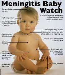 Cara Menyembuhkan Meningitis pada Anak Bayi | AgaricPro Herbal Alami