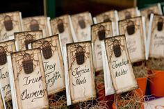 Seed packet favors serve as table assignments.