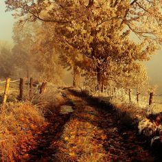 Frosty autumn ©Sebastian Luczywo  Poland - mountains Rudawy Janowickie