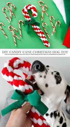 DIY Woven Fleece Christmas Candy Cane Dog Tug Toy