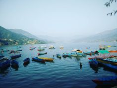 In search for the right boat to take me to my destination!  #reflection #life #destination #pokhara #nepal #phewalake