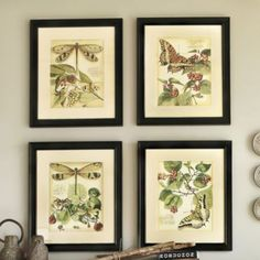 I love these Whimsical Dragonfly Prints (I & II) I got them for my home and have really enjoyed them (by Ballard Designs)