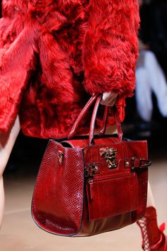 Versace | Fall 2014 Ready-to-Wear Collection