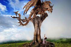 Древесный дракон, терроризирующий местных жителей.