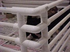 How to make your own Puppy Pen with PVC Pipes - DreamyDoodles Northwest.