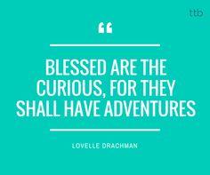 We're all seeking adventures!  #travel #travelling #travellers #travelquote #travelgram #travellove #travelinspiration #travelwishlist