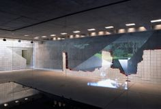Inhotim centro de arte contemporânea. Adriana Varejão