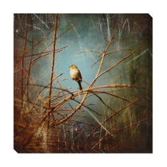 Solitude Oversized Gallery Wrapped Canvas   Overstock.com Shopping - The Best Deals on Canvas
