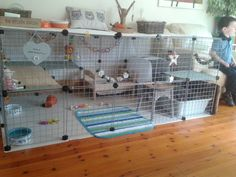 Rabbits United Forum: pictures and ideas from bunny owners on the types of materials and setups they used for the bunny rabbit's spaces homes playyards etc. Indoor Rabbit House, Indoor Rabbit Cage, House Rabbit, Pet Rabbit, Rabbit Hutch Indoor, Rabbit Pen, Lionhead Rabbit, Diy Bunny Cage, Bunny Cages