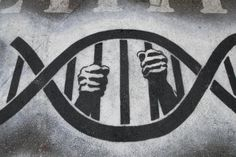 """""""It is game over for 23andMe, and rightly so"""" -- Click through to read about FDA's ruling on the firm and the broader implications for the genome testing industry."""
