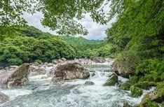 Visit amazing Yakashima Island on our Kyushu Trails - Island of Fire trip. Yakushima, Mountain Trails, Kyushu, Visit Japan, Beautiful Islands, Paths, Fire, Amazing, Holiday