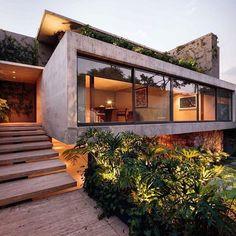 Landscaped garden underneath overhang and steps