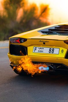 "watchanish: "" Alyaquob88's Lamborghini Aventador spitting flames. Read the full article on WatchAnish.com. """
