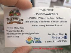 Hydroponic Farming of Bekemeyer Family Farm....details in Windermere Sun at: http://windermeresun.com/2016/06/15/hydroponic-farming-of-bekemeyer-family-farm-in-winter-garden-florida