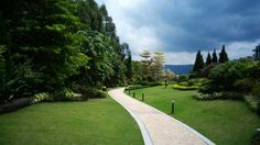 Inspired by Garden of Ninfa, italy. Field Trips, Hong Kong, Tin, Golf Courses, Sidewalk, Public, Italy, Inspired, Landscape