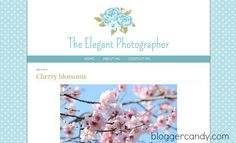 Elegant Photographer - awesome free wide photo-blog template for Blogger. Customizable! Super cute.