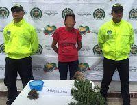 Noticias de Cúcuta: Desmantelan un cultivo de marihuana que camuflaban...