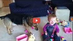 Vídeo para Rir  A Loucura do Bebé ao Ver Bolhas de Sabão