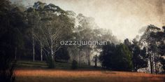 Yarramalong Autum morning by ozzzywoman Painting, Art, Art Background, Painting Art, Kunst, Paintings, Performing Arts, Painted Canvas, Drawings