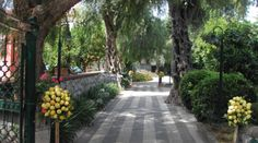 Villa Angelica 4.png