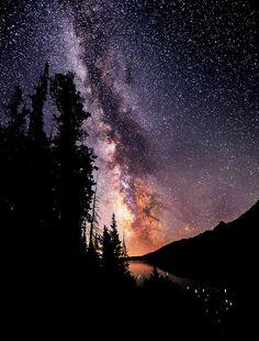 #stars #space #trees