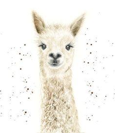 Alpacas, Lama Animal, Farm Animals, Cute Animals, Llama Arts, Alpaca Gifts, Llama Christmas, Llama Print, Cute Llama