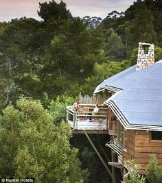 South Africa: The Tsala Treetop Lodge in Plettenberg Bay places its guests among 10 stone and glass lodges high above the Tsitsikamma Forest Villas, The Places Youll Go, Places To Visit, Treehouse Hotel, Cool Tree Houses, Bird Houses, Africa Travel, Lodges, Places To Travel