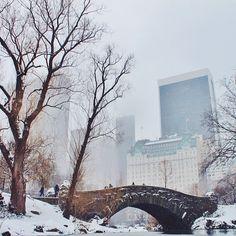 Winter wonderland. ❄️