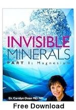 you reed book: INVISIBLE MINERALS