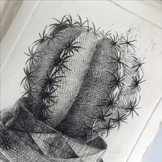 Etching + Dry point. Cactus