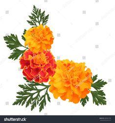 Decorative Background Orange Marigolds Symbol Mexican Stock Vector (Royalty Free) 480841780 Calendula, Royalty Free Images, Royalty Free Stock Photos, Diwali Pictures, Mexican Holiday, Farm Logo, Free Vector Art, Photo Illustration, All Art