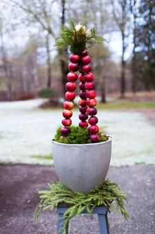 Welcome Christmas! Apples and concrete with branches of spruce Swedish Christmas, Scandinavian Christmas, Noel Christmas, Outdoor Christmas, Rustic Christmas, Christmas And New Year, All Things Christmas, White Christmas, Christmas Crafts